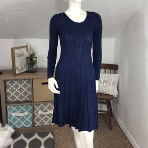 Max Studio Navy Blue Flouncy Sweater Dress